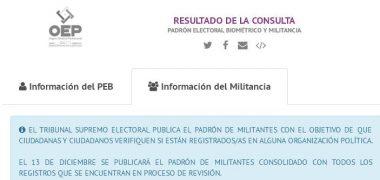 CONSULTA AL PADRÓN ELECTORAL Y SU MILITANCIA