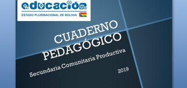 REGISTRO PEDAGÓGICO DEL NIVEL SECUNDARIO | MINEDU【2019】