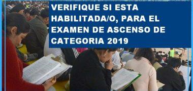 VERIFICACIÓN DE LA HABILITACIÓN AL ASCENSO DE CATEGORÍA【2019】