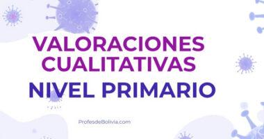Valoraciones Cualitativas Del Nivel Primario【2020】