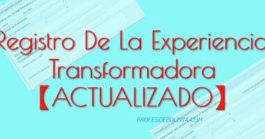Registro De La Experiencia Transformadora 【2020】