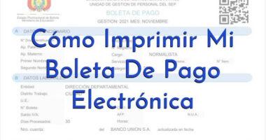 Imprimir Mi Boleta De Pago Electrónica