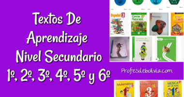 Textos De Aprendizaje Del Nivel Secundario 【2021】